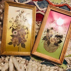 Vintage, Rare, Beautiful Shabby Chic Press Flowers